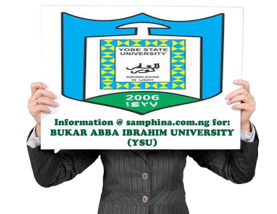 Bukar Abba Ibrahim University YSU