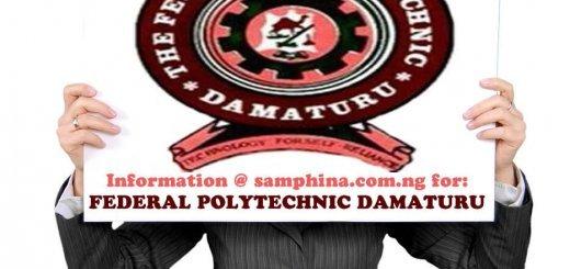 Federal Polytechnic Damaturu
