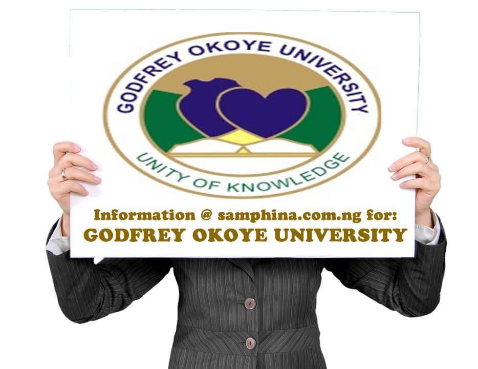 Godfrey Okoye University gouni