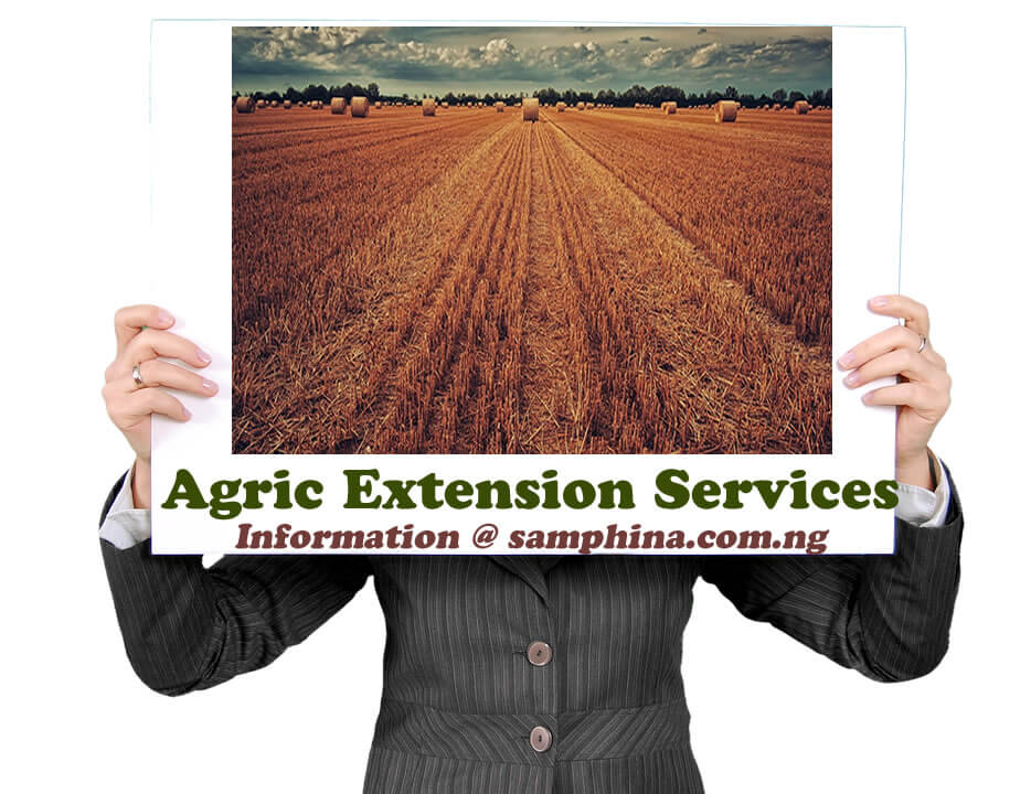 Agric Extension Services
