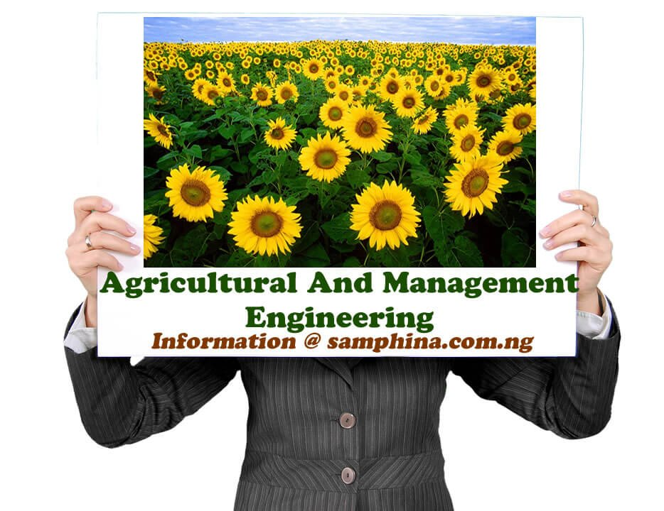 Agricultural And Management Engineering