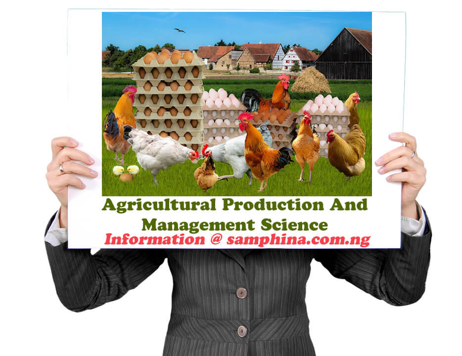 Agricultural Production And Management Science