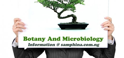 Botany And Microbiology