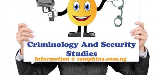 Criminology And Security Studies