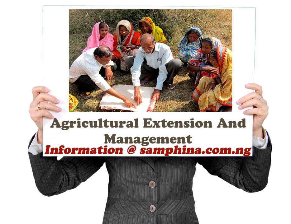 Agricultural Extension And Management