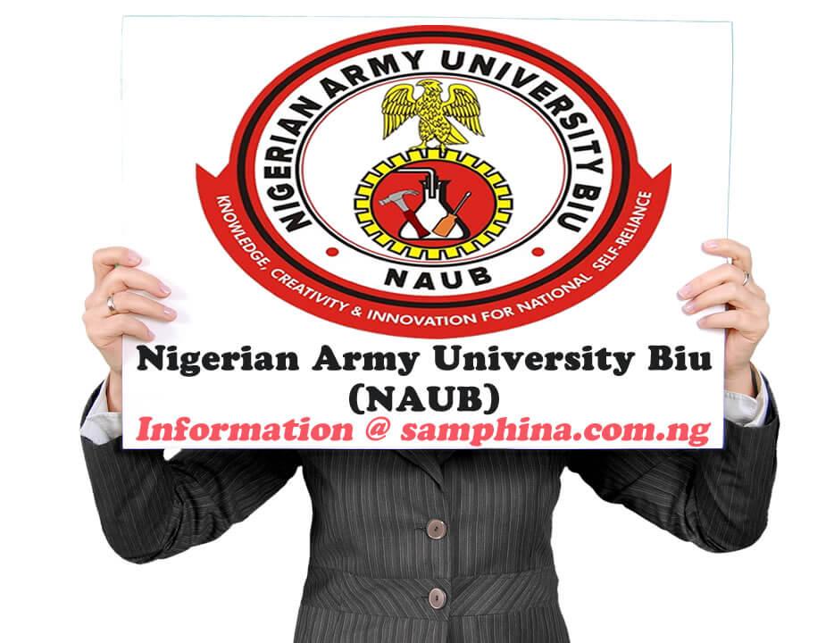 2019 Entry Requirements for Nigerian Army University Biu (NAUB)