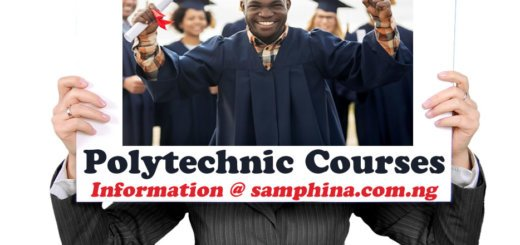 Courses Offered in Nigerian Polytechnic